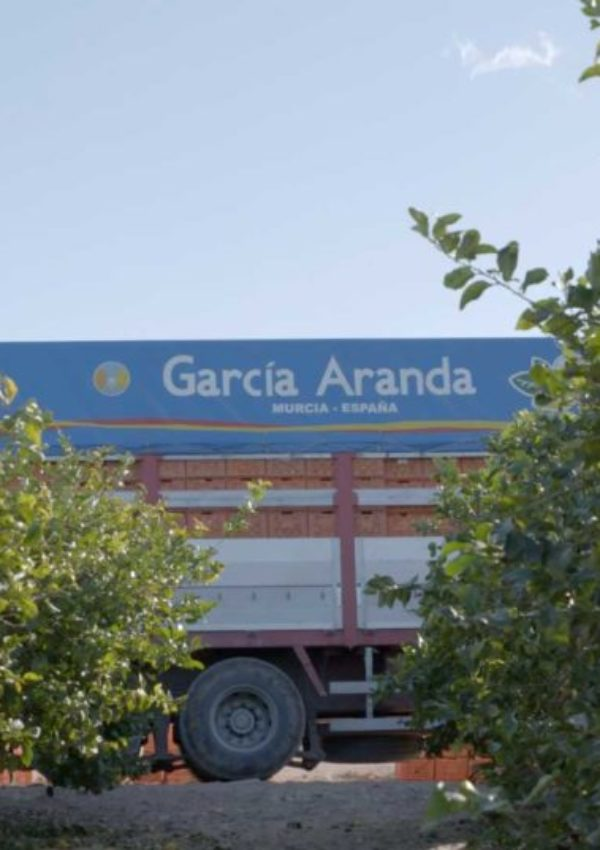 CampoGarciaAranda