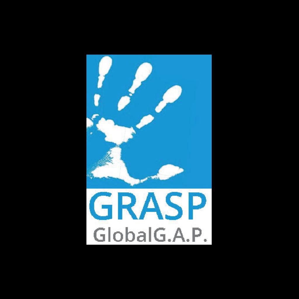 GRASP GlobalG.A.P Garcia Aranda 06